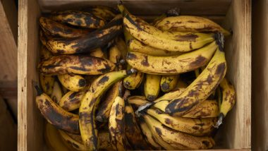 blog-ciss-desperdicio-alimentos